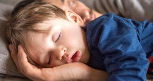 Toddler boy sleeping next to dad